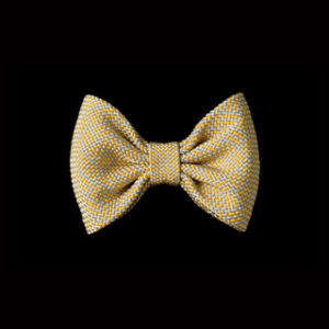 col_2nd_bowtie-butterfly_t